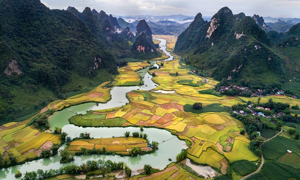 history vietnam essay